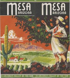Mesa Arizona by RazorBoy2019, via Flickr