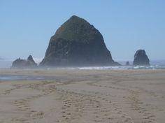 A Beach in Oregon