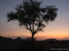 Guide To The Edge Of The World in Riyadh, Saudi Arabia » Blue Abaya