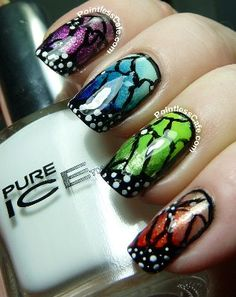 Butterfly Wings starring Pure Ice | Pointless Cafe