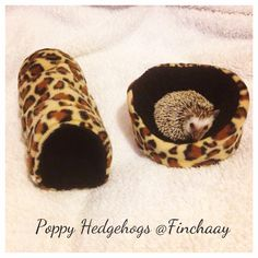 Hans My Hedgehog