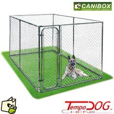 CHENIL PARC TEMPODOG pour chien