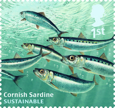1st, Cornish Sardine from Sustainable Fish (2014)