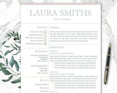 Resume TemplateCv Template Resume Templates  Resume Templates
