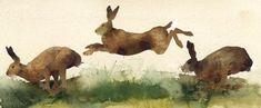 """rabbit art, Kate Osborne """"On the Run"""" Painting & Drawing, Watercolor Paintings, Watercolours, Watercolor Artists, Kate Osborne, Running Drawing, Rabbit Run, Rabbit Hole, Bunny Art"""