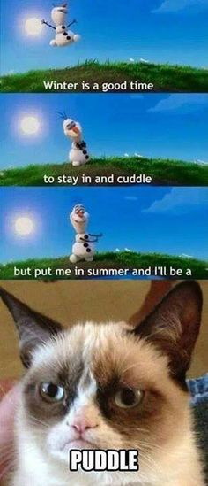 grumpy cat said it, not me