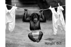 Hangin' out