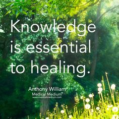 """Knowledge is essential to healing."" - Medical Medium"