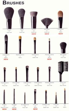 House of Sienna: Makeup Wednesday: How To Clean Make-Up Brushes