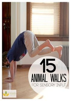 15 Animal Walks for Sensory Diet   Love these indoor kids exercises for getting kids moving and encouraging pretend play!