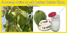 3 Easy Steps To Make Soursop Juice For Cancer Cure!!