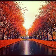 ^Sefa Yamak^ @Sefa Yamak Instagram photos | Webstagram