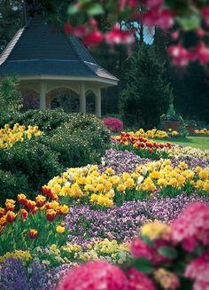 Huntsville Botanical Gardens, Alabama Free Aquaponics Garden Information Kew Gardens, Botanical Gardens, Outdoor Gardens, Horticulture, Amazing Gardens, Beautiful Gardens, Spring Garden, Home And Garden, Garden Tips