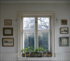 An inside window box ... great for bringing a little green indoors during the winter