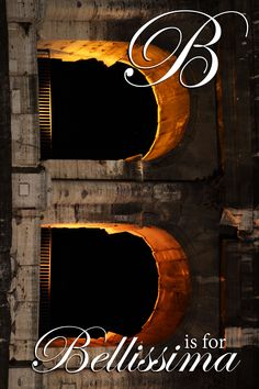 "B Is For ""Bellissima""  #OrdinaryExtraordinaryNet #OrdinaryExtraordinaryNetPhoto #OrdinaryExtraordinaryNetTravel #OneFineDay #TheseBootsAreMadeForWalking #Letterphotography #Bellissima #Gorgeous #ColiseumRomeItaly #ColiseumRome #ColiseumItaly #RomeItaly #Rome #Italy #Gladiator #SPQR #RomeSPQR #SPQRRome Letter Photography, One Fine Day, Rome Italy, Us Travel, Unique Art, Places To Visit, Neon Signs, Adventure, Blog"