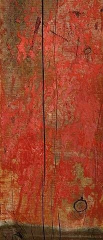 'redwood' Gillian Lindsay