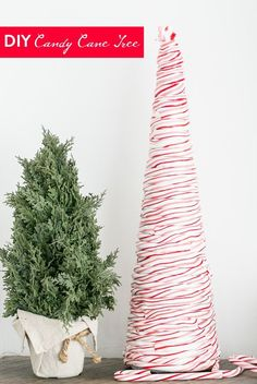*With directions* - This holiday season learn how to make a pretty DIY candy cane Christmas tree by hearing candy canes to a pliable consistency. Wonderful centerpiece or displayed on fireplace mantels as part of a winter holiday scene. Candy Cane Christmas Tree, Noel Christmas, All Things Christmas, Winter Christmas, Christmas Ideas, Christmas Ornaments, Christmas Thoughts, Elegant Christmas, Country Christmas