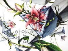 Art Drawings, Objects, Plants, Anime, Cartoon Movies, Planters, Anime Music, Anime Shows, Plant