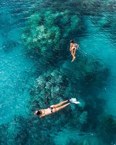 Travel destinations Beautiful places Adventure travel Travel photography Places to travel Travel inspirat Travel destinations Beautiful places Adventure travel Travel photography Places to travel Travel inspiration 120963939978048316 Places To Travel, Travel Destinations, Places To Visit, Great Barrier Reef Australia, Shotting Photo, Marsa Alam, Australia Map, Foto Instagram, Travel Goals