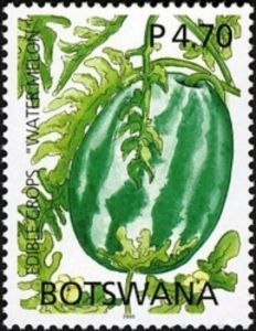 Sello: Watermelon (Botswana) (Edible Crops) Mi:BW 816,WAD:BW008.05