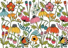 Wild Flowers by Lisa Congdon