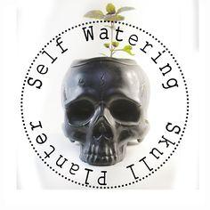 Two Part Ceramic Skull Self Watering planter Available at: www.etsy.com/shop/ColdMountainStudio #skull #human #humanskull #planter #pot #selfwatering #ceramic #realistic #real #metalic #newplanterscomingup #new #calavera #modern #decor #homedecor #homesweethome #homegoods #etsyshop #etsy #garden #ceramicplanter #skullplanter #clay #glaze #Skullplanter #selfwateringplanter #selfwateringpot #self-watering Skull Planter, Self Watering Planter, Human Skull, Ceramic Planters, Home Goods, Sweet Home, Clay, Etsy Shop, Ceramics
