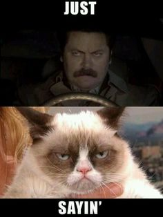 haha! I love Grumpy Cat and Parks and Rec's Ron Swanson!