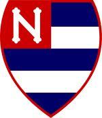 Blog do Bellotti - Opinião sobre futebol: Nacional é campeão Paulista