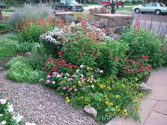 "A ""Soil Mender Hummingbird Garden"" in Amarillo, TX. No lawn, all flowers, ground covers, and shrubs using only Soil Mender products!"
