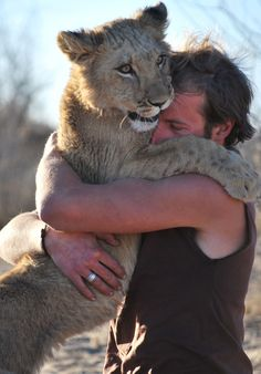 """The extraordinary bond between conservationist Mikkel Legarth and the lioness he once saved from almost certain death can be summed up in one picture"". I wanna hug that lioness too :) Men With Cats, Lion Pride, African Safari, Fauna, Beautiful Cats, Big Cats, Lions, Cuddling, Fur Babies"