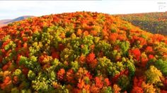 Breath-taking views of Vermont in autumn  Credit: Caters News Agency #news #alternativenews