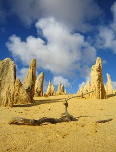 Pinnacles Desert, WA. 18 of the best day walks in Australia - Australian Geographic Outdoor