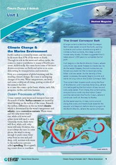 Climate Change Animal Studies - WeAreTeachers - IFAW Education Learn how climate change is  affecting animals worldwide by  downloading the lessons below.