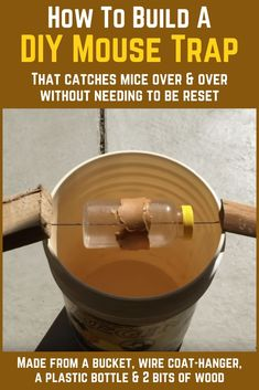 How To Build A DIY Self-Resetting Mouse Trap DIY bucket mouse trap that catches mice over and over without resetting. Rat Trap Diy, Mouse Trap Diy, Best Mouse Trap, Homemade Mouse Traps, Homemade Robot, Fly Traps, Mouse Traps That Work, Amigurumi