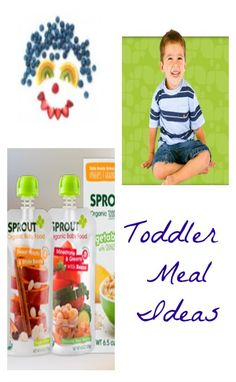 Toddler Meal Ideas: Making Artwork Out of Fruits and Vegetables