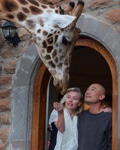 Ellen And Portia, Portia De Rossi, Charles Bukowski, Ellen Degeneres, Giraffe, Celebrities, Celebs, Animals, Tattoo