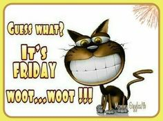 Today Is Friday, Good Morning Friday, Its Friday Quotes, Friday Humor, Thursday Humor, Funny Friday, Sunday, Cute Good Morning Quotes, Morning Inspirational Quotes