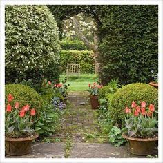love how the pots of tulips flank the arch in this hedge