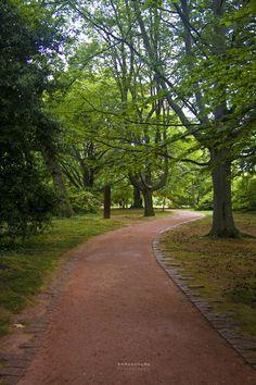 """""""The right path""""    Serralves Foundation's gardens - Oporto city, Portugal    //AnAssunção'Photo"""