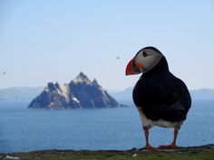 15 Incredible Photos From Skellig Michael