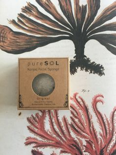 Review: The July H2BAR Redhead Subscription Box | pureSOL Konjac Sponge