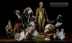 Pretty cool goodies...you can never have too many skulls, fossils or minerals...right? RIGHT?!