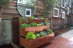 No ideas for a vertical garden? We have six tips and tutorials to make your vertical garden preferred step by step. If you are looking for ideas for a vertical garden, we have six simple and… Jardim Vertical Diy, Vertical Garden Diy, Vertical Gardens, Vertical Bar, Herb Garden, Vegetable Garden, Big Garden, Easy Garden, Dream Garden