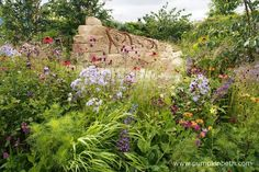 Zoflora: Outstanding Natural Beauty was designed by Helen Elks-Smith, and built… Rhs Hampton Court, Elks, Dry Stone, Annual Flowers, Flower Show, Hedges, Beautiful Gardens, The Hamptons, Palace