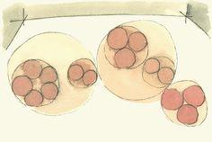 08 「五大・二大・三眼・二眼・三宝」説画家の北脇昇(一九〇一〜五一)は「龍安寺石庭ベクトル構造」と題する油絵を制作。五つの石組のさらに西側に、仮想の第六点を配置すれば、石組のバランスがとれることを暗示した。