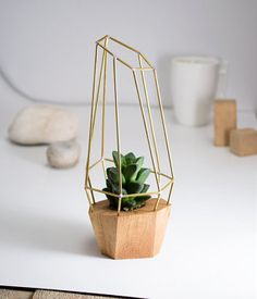 Modern Faceted Planter for Air Plant Succulent by RawOriginals