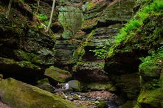 Gorge at Parfrey's Glen is a peek into the past