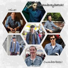 Chambray Batch collage