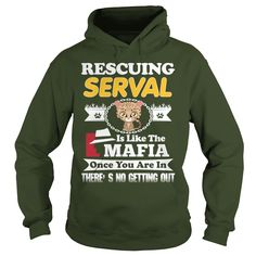 Rescuing SERVAL Is The Like Mafia #gift #ideas #Popular #Everything #Videos #Shop #Animals #pets #Architecture #Art #Cars #motorcycles #Celebrities #DIY #crafts #Design #Education #Entertainment #Food #drink #Gardening #Geek #Hair #beauty #Health #fitness #History #Holidays #events #Home decor #Humor #Illustrations #posters #Kids #parenting #Men #Outdoors #Photography #Products #Quotes #Science #nature #Sports #Tattoos #Technology #Travel #Weddings #Women
