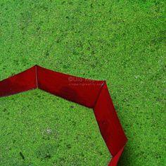 Red umbrella | Cropping Reality by Ula Kapala